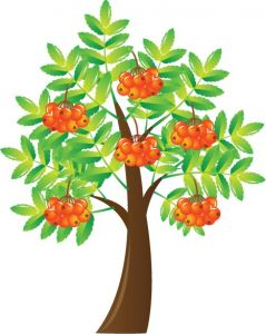 ornamental-tree-vector-illustration8