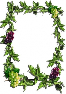 Photoshop flower frame template