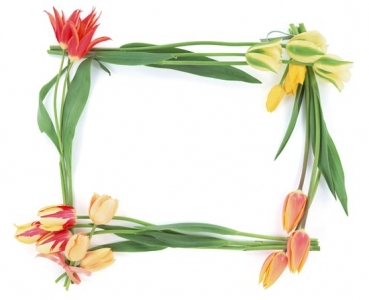 Frame with flowers design