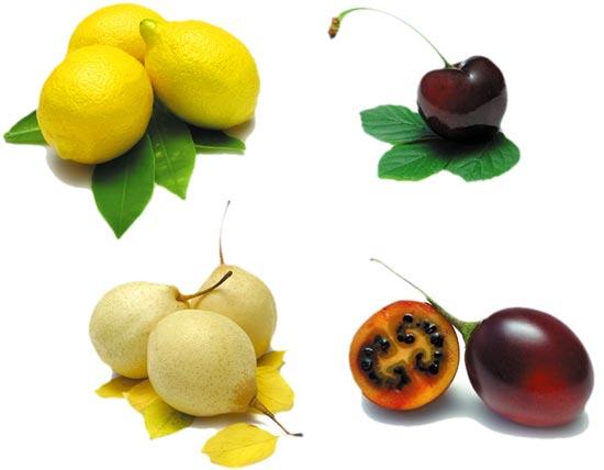 PSD - Various Fruits Card Template