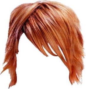 Photoshop hairstyle layout
