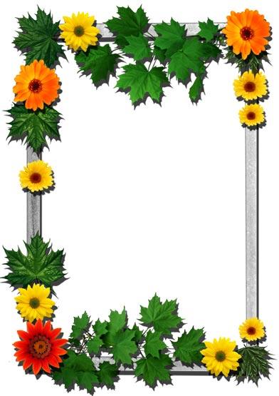 16 png flower frames for photoshop download 16 png flower frames for ...