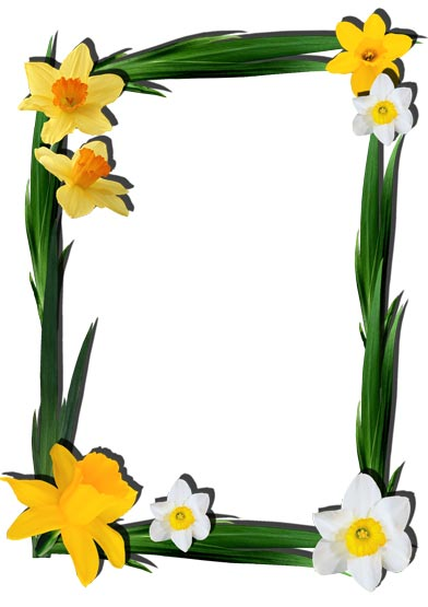 Png flower frames for photoshop