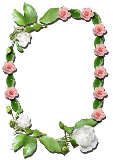 Flower Frames for Photoshop