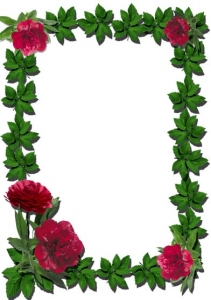 Png flower frame for Photoshop
