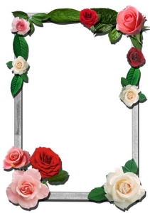 Transparent flower frame for Photoshop