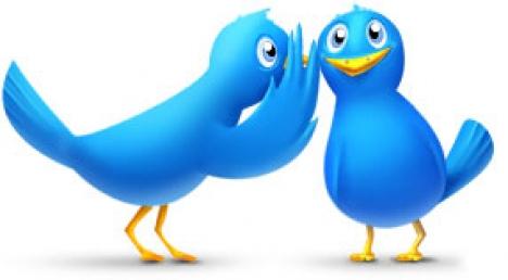 Twitter bird icons