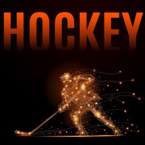 hockey player poly,hockey player poly