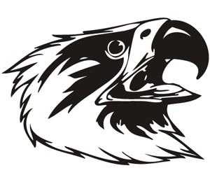 Predatory birds vector