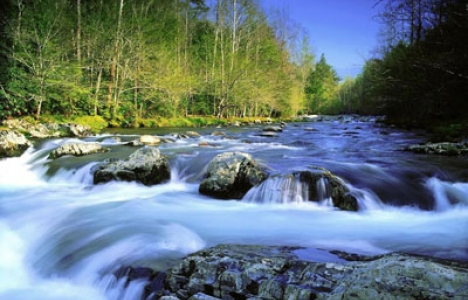 Rivers and nature wallpaper