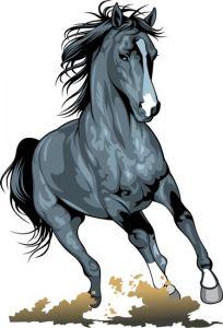 Running horses vector illustrations