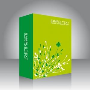 Software box template