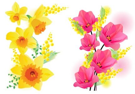 Spring flowers vector template