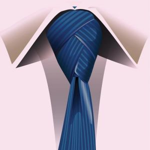 Ties and knots vector models