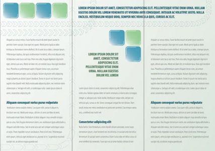 Tri fold corporate brochure design