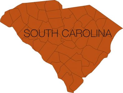 south carolina region with counties vector
