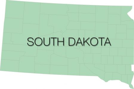 south dakota region with counties vector
