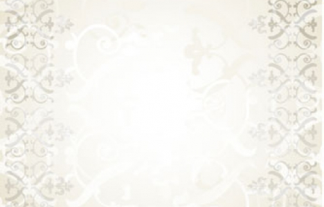 Banner with frames vector