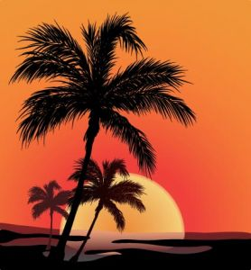 beach-with-palm-trees-vector2