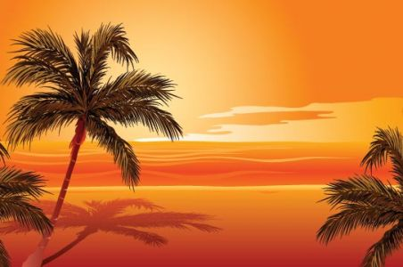 beach-with-palm-trees-vector3