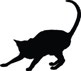 Vector cats silhouette shapes