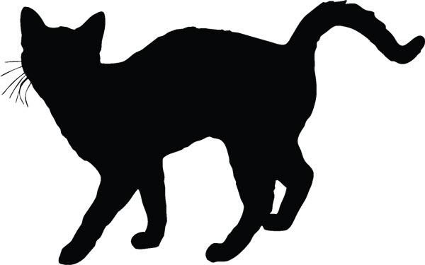 Cat Ears Patterns