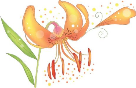 Vector hand-drawn sketches of spring flowers