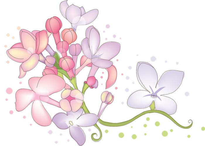 Vector hand drawn sketches of spring flowers mightylinksfo