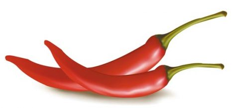Vegetable chili vector