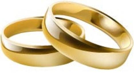 Wedding ring vector