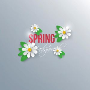 Abstract spring background with paper flowers. Vector