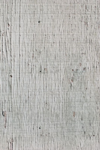Wood texture from backyard