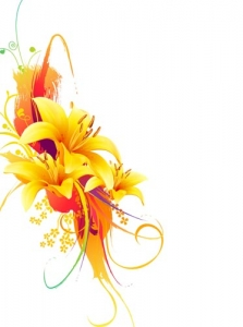 Yellow lily vector