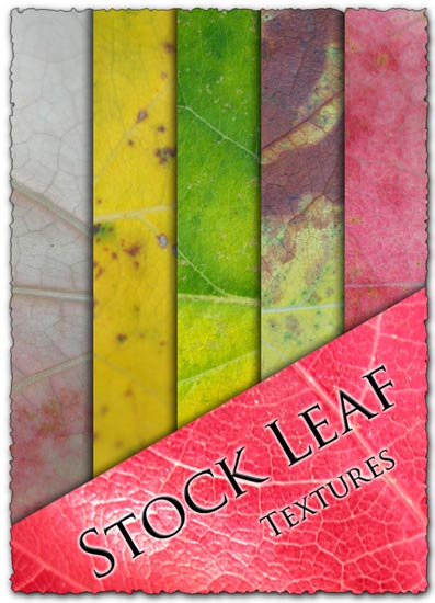 Leaf textures design