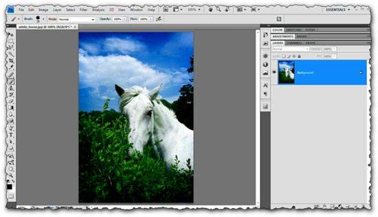 Photoshop tutorial Black and White Images