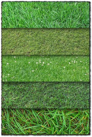 10 grass textures backgrounds