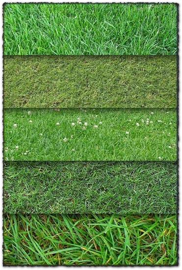 10 grass textures backgrounds