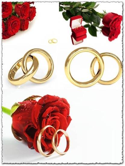 5 wedding rings templates