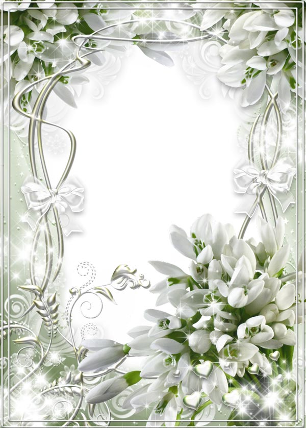white transparent wedding frame with snowdrop