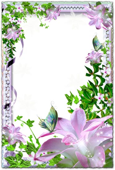 Floral photo frame with pearls transparent png