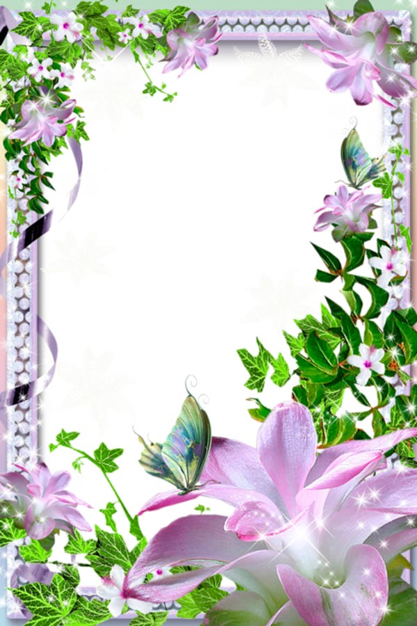 floral photo frame with pearls transparent png school border clip art frame school border clip art free