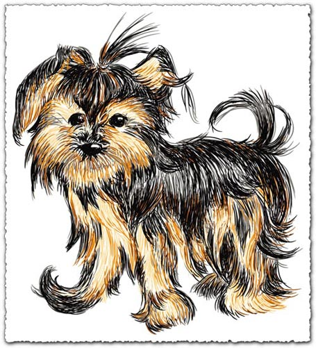Hand drawn vector dog