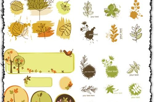 Autumn leaves vectors