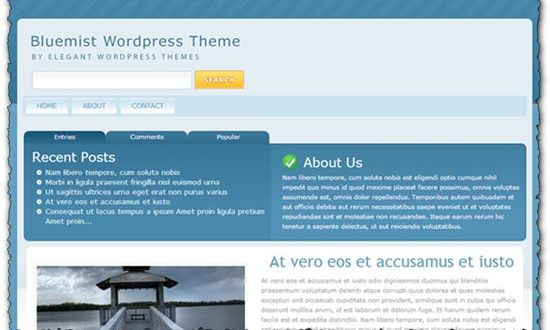 Bluemist Elegantthemes wordpress template