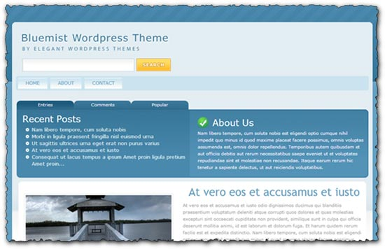 Bluemist Elegantthemes wordpress template