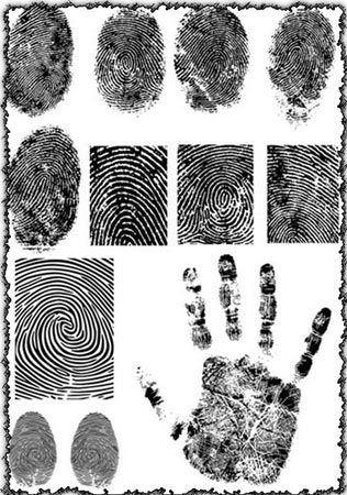 Fingerprint vectors design
