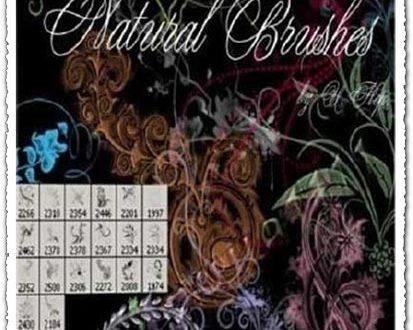 Flower Photoshop ABR brushes