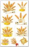 Golden wheat vectors