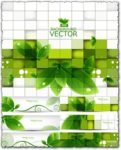 Green leaves vector banners