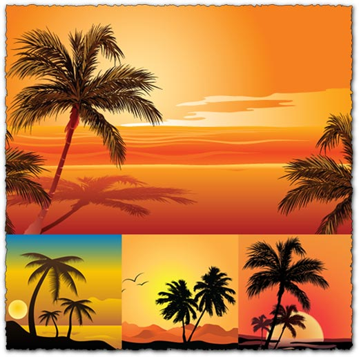 Vector beach with palm trees template